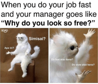 "Memes, Free, and Office: When you do your job fast  and your manager goes like  ""Why do you look so free?""  SGAG  Simisai?  Apa ini?  Do fast also kena?  Do slow also kena? Earlier this morning in office..."