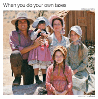 Funny, Taxes, and Thank You: When you do your own taxes  @tank.sinatra  MADE WITH MOMUS No thank you mr professional accountant