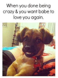 Memes, 🤖, and You Again: When you done being  crazy & you want babe to  love you again.
