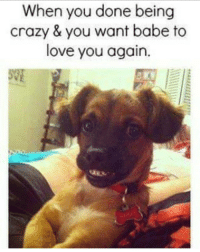 Memes, Babes, and 🤖: When you done being  crazy & you want babe to  love you again. I'm done for now I promise, just love on me 😐😆😂😅