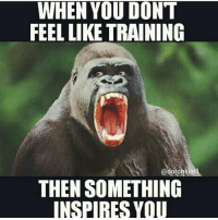 Beastmode on😄: WHEN YOU DON'T  FEEL LIKE TRAINING  adoronkim  THEN SOMETHING  INSPIRES YOU Beastmode on😄