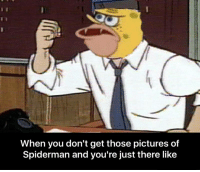me irl: When you don't get those pictures of  Spiderman and you're just there like me irl