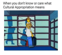 appropriation: When you don't know or care what  Cultural Appropriation means