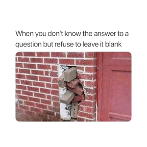 Blank, Answer, and You: When you don't know the answer to a  question but refuse to leave it blank Accurate 😅