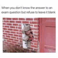 Hope, Blank, and Answer: When you don't know the answer to an  exam question but refuse to leave it blank  SP Hope is the answer 😅