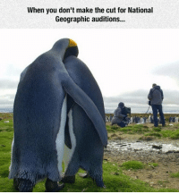 srsfunny:It's OK, Honey, We'll Try Next Year: When you don't make the cut for National  Geographic auditions... srsfunny:It's OK, Honey, We'll Try Next Year