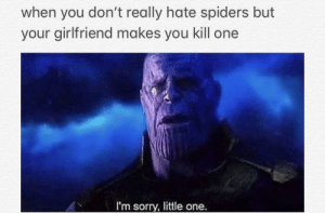 Hate Spiders