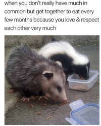respect each other: when you don't really have much in  common but get together to eat every  few months because you love & respect  each other very much