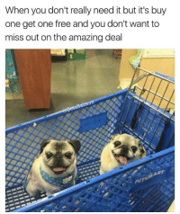 Memes, Free, and Amazing: When you don't really need it but it's buy  one get one free and you don't want to  miss out on the amazing deal  HART I'm a sucker for sales | 👉 @betasalmon for more