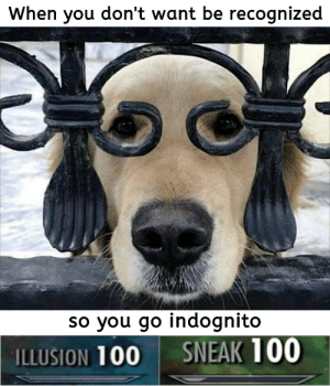 Indognito: When you don't want be recognized  so you go indognito  SNEAK 100  ILLUSION 100 Indognito