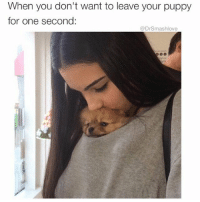 "People: ""Smash what's your type Bruh?"" Me: ""Passive aggressive, snide, attacking, borderline unstable, loves puppers."" 😍😂😂😂: When you don't want to leave your puppy  for one second  DrSmashlove People: ""Smash what's your type Bruh?"" Me: ""Passive aggressive, snide, attacking, borderline unstable, loves puppers."" 😍😂😂😂"