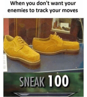 Skyrim, Enemies, and You: When you don't want your  enemies to track your moves  SNEAK 100 Miss Skyrim
