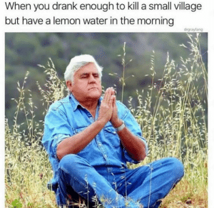 meirl: When you drank enough to kill a small village  but have a lemon water in the morning  drgrayfang meirl