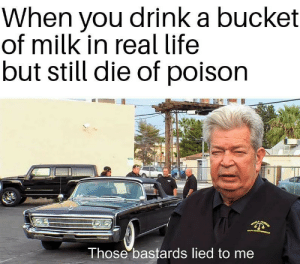 *dies*: When you drink a bucket  of milk in real life  but still die of poison  Those bastards lied to me *dies*