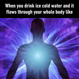 Dank, Water, and Cold: When you drink ice cold water and it  flows through your whole body like Especially after you eat something mint flavoured