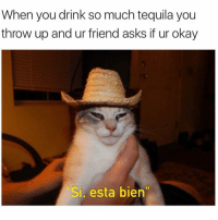 "Be Like, Love, and Mexico: When you drink so much tequila you  throw up and ur friend asks if ur okay  Si, esta bien Tequila be like: ""Don't be shy. Send that 97th unanswered text, text till he answers! He probably just forgot that he's in love with you."" (@violetbens0n me in Mexico this weekend)"