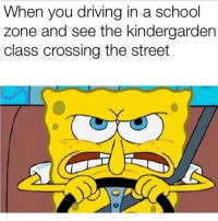Skrrrt: When you driving in a school  zone and see the kindergarden  class crossing the street Skrrrt