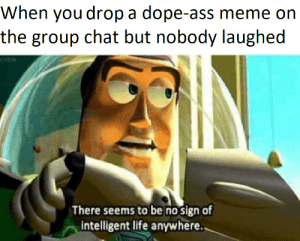 No Sign Of Intelligent Life: When you drop a dope-ass meme on  the group chat but nobody laughed  There seems to be no sign of  intelligent life anywhere.