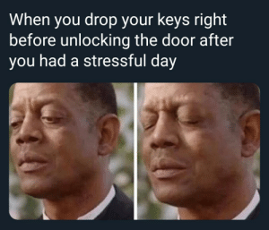 Dank, Memes, and Target: When you drop your keys right  before unlocking the door after  you had a stressful day Must I endure this suffering by siouxsie_siouxv2 MORE MEMES