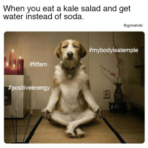 Soda, Kale, and Water: When you eat a kale salad and get  water instead of soda.  @gymaholic  When you eat a kale salad and get water instead of soda.  More motivation: https://www.gymaholic.co  #fitness #motivation #gymaholic
