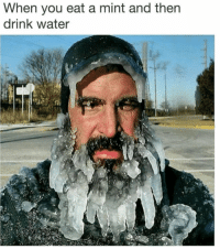 Funny, Water, and Mint: When you eat a mint and then  drink water So coooooold! https://t.co/Ni16b1QfJB