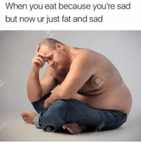 Funny, Lmao, and Fat: When you eat because you're sad  but now ur just fat and sad Lmao
