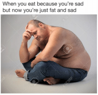 Memes, Fat, and Sad: When you eat because you're sad  but now you're just fat and sad Dankmemesgang.com