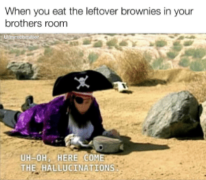 How many is too many: When you eat the leftover brownies in your  brothers room  U/mrschmitler  UH-OH, HERE COME  THE HALLUCINATIONS How many is too many