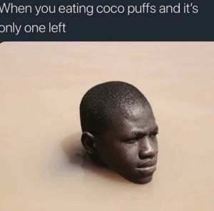 CoCo, Dank, and Memes: When  you eating coco puffs and it's  only one left Sweet little coco puffs by Cali_Bunch6 MORE MEMES