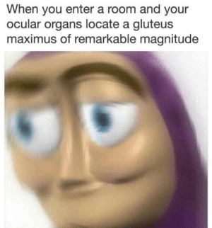 Maximus, Irl, and Me IRL: When you enter a room and your  ocular organs locate a gluteus  maximus of remarkable magnitude me_irl