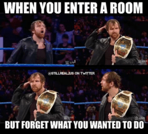 29 Hilarious WWE Memes | +It's all about funny shits+: WHEN YOU ENTER A ROOM  LIVE  BUT FORGET WHAT YOU WANTED TO DO 29 Hilarious WWE Memes | +It's all about funny shits+