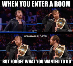 29 Hilarious WWE Memes | QuotesHumor.com: WHEN YOU ENTER A ROOM  LIVE  BUT FORGET WHAT YOU WANTED TO DO 29 Hilarious WWE Memes | QuotesHumor.com