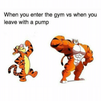 Gym, Memes, and 🤖: When you enter the gym vs when you  leave with a pump  CIV THEM FEELS