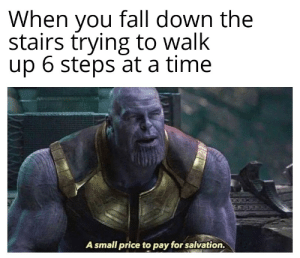 Fall, Time, and Dank Memes: When you fall down the  stairs trying to walk  up 6 steps at a time  A small price to pay for salvation. Those are rookie numbers
