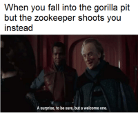 Fall, Dream, and Gorilla: When you fall into the gorilla pit  but the zookeeper shoots you  instead  A surprise, to be sure, but a welcome one.   Everybody wet dream