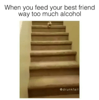 "Yea right you're ""totallllyyy sober"" Becky SoundOn @Drunkfail: When you feed your best friend  way too much alcohol  drunkfail Yea right you're ""totallllyyy sober"" Becky SoundOn @Drunkfail"