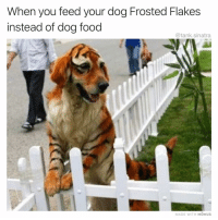 Food, Funny, and Guess: When you feed your dog Frosted Flakes  instead of dog food  @tank.sinatra  MADE WITH MOMUS TTHHEEYY'RREE better than dog food I guess