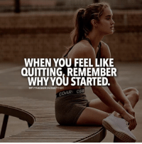 Never quit! - From @fitnessmindset101: WHEN YOU FEEL LIKE  QUITTING, REMEMBER  WHY YOU STARTED.  @FITNESSMINDSET1O1  COAR: COAR Never quit! - From @fitnessmindset101