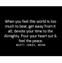 Memes, Too Much, and Bear: When you feel this world is too  much to bear, get away from it  all; devote your time to the  Almighty. Pour your heart out &  feel the peace.  MUFTI ISMAIL MENK Tag • Share • Like When you feel this world is too much to bear, get away from it all; devote your time to the Almighty. Pour your heart out & feel the peace. muftimenk muftimenkfanpage muftimenkreminders Follow: @muftimenkofficial