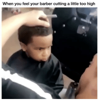 Barber, Memes, and Cool: When you feel your barber cutting a little too high Not cool 😂 Credit: @bentrappinn