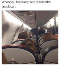 Af, Fam, and Memes: When you fell asleep and missed the  snack cart. Fam do not travel first-biz class on delta (international) that shit wack afff. I'm 6'4 and those pull out chairs or whatever the fuck they are wackkkkk af. And the flight attendants don't even suck ya meat or give you 4 whisky shots at once. not recommend.