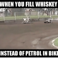 Troll, Trolling, and Vine: WHEN YOU FILL WHISKEY  INSTEAD OF PETROL IN BIKE This is what happens When Bike gets High 😂😂 TAG such friends jinko bohot chadd jaati 😜😝 @_dekhbhai_ . . Love laughter comedy funny memes videooftheday happy smile instamood amazing life bestoftheday Follow Fun crazy meme vine troll enjoy hilarious bike racing video