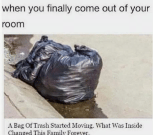 Family, Lol, and Trash: when you finally come out of your  room  A Bag Of Trash Started Moving. What Was Inside  Changed This Family Forever. Lol me all the time!