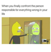Life, Memes, and Mean: When you finally confront the person  responsible for everything wrong in your  life YOUUUUU!!! Wait. I mean MEEEEEEE! (Cred Internets)