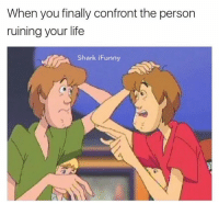 Life, Shark, and You: When you finally confront the person  ruining your life  Shark iFunny