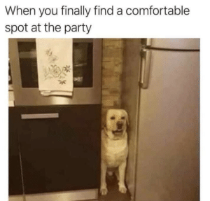 meirl: When you finally find a comfortable  spot at the party meirl