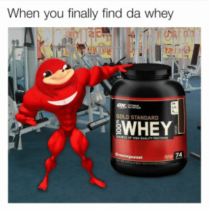 Dank, Memes, and Protein: When you finally find da whey  24  UN OPTIMUM  NUTRITION  5.5  4  GOLD STANDARD  96  WHEY  SOURCE OF HIGH QUALITY PROTEINS  @memegourmet  OF THE  PROTEIN  W  SERVINGS  NET WT 2.27 kg (S b)e  AT Do you know de whey by finnduino FOLLOW 4 MORE MEMES.