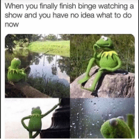 Funny, Idea, and You: When you finally finish binge watching a  show and you have no idea what to do  now