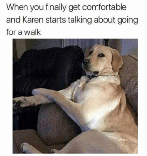 """Comfortable, Dank, and Mean: When you finally get comfortable  and Karen starts talking about going  for a wallk What you mean """"walk""""???"""