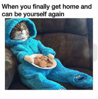 Bra off, sweats on. Meme cred @taylormeno Photo cred @my_furry_babies: When you finally get home and  can be yourself again Bra off, sweats on. Meme cred @taylormeno Photo cred @my_furry_babies